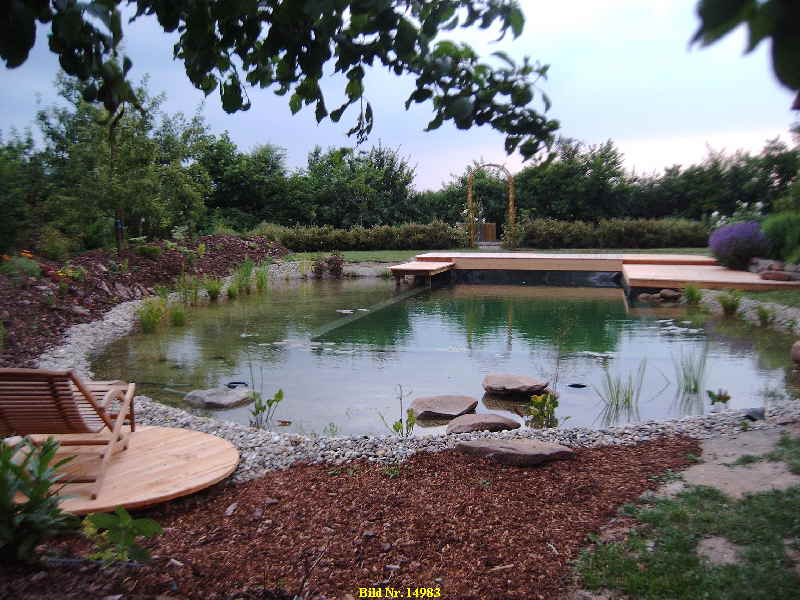 schwimmteich planen schwimmteich bauen schwimmteich anlegen biotop im garten. Black Bedroom Furniture Sets. Home Design Ideas