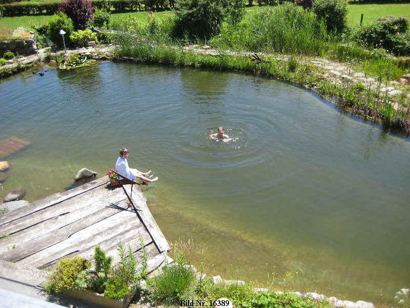 Kontakt Schwimmteich Kontakt Bilder Schwimmteich: estanque natural como hacerlo