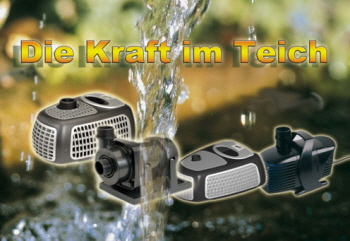 Die Richtige Pumpe Für Schwimmteich Teich Filter